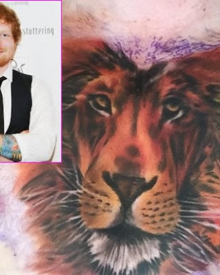 Ed Sheeran Says His Massive Lion Chest Tattoo Won't Be His Last!